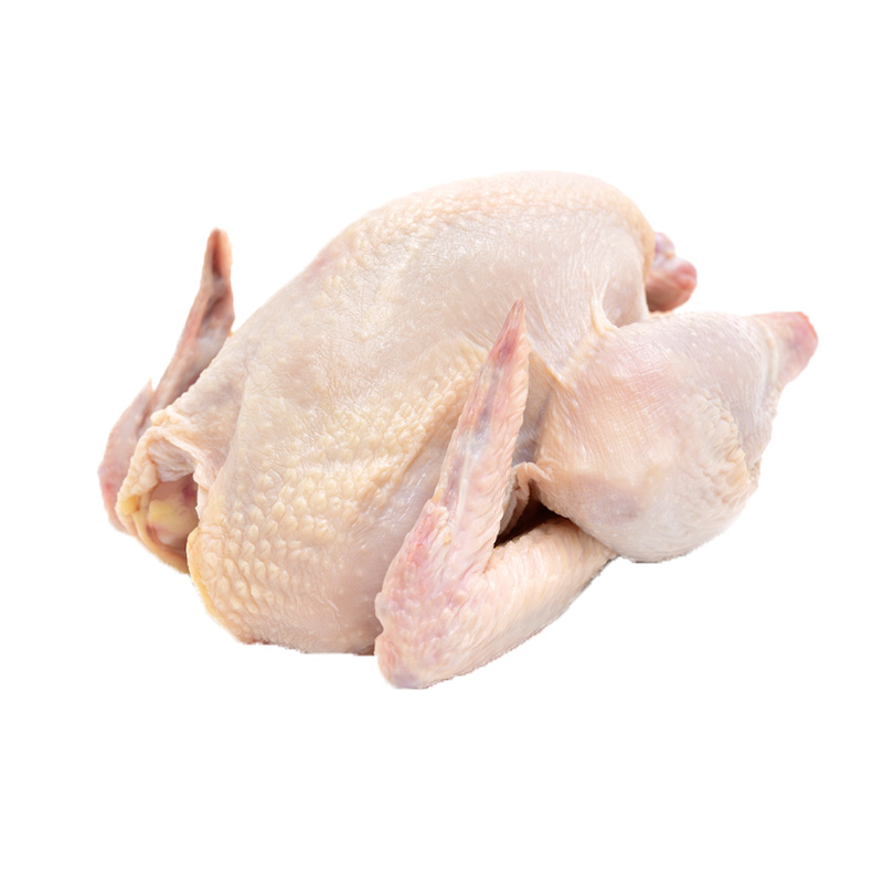 Whole Fresh Chicken (1.5-1.6kg)